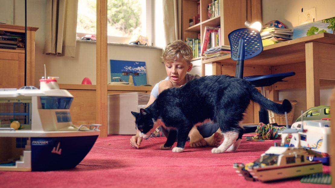 Ein Junge sitzt in seinem Kinderzimmer auf dem Boden und spielt mit einer Katze